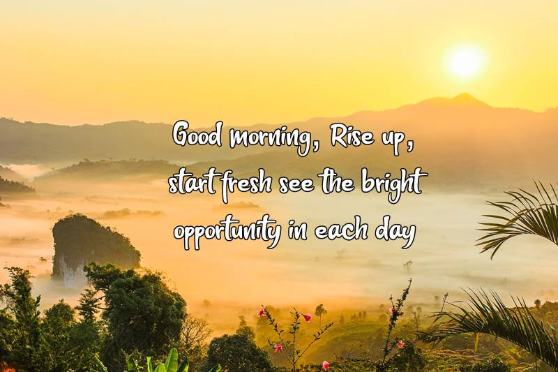 The Good Morning Quotes For You