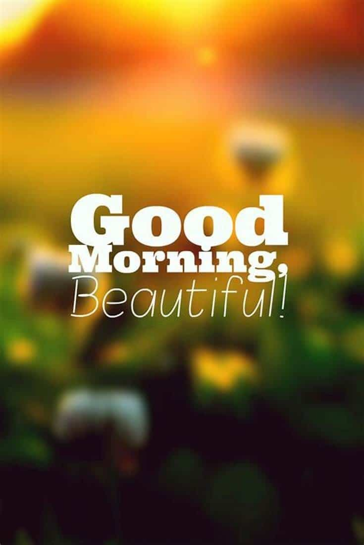 10 Good Morning Quotes Images and Sayings 6