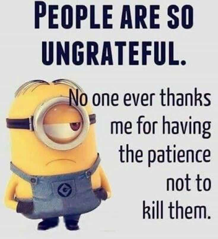 28 Funny Inspirational Quotes And Minions Funny Memes 13