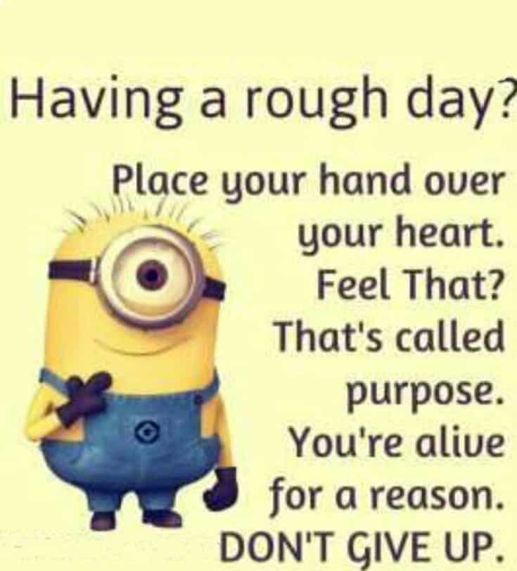 28 Funny Inspirational Quotes And Minions Funny Memes 19