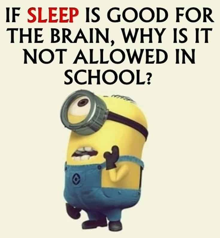 28 Funny Inspirational Quotes And Minions Funny Memes 3