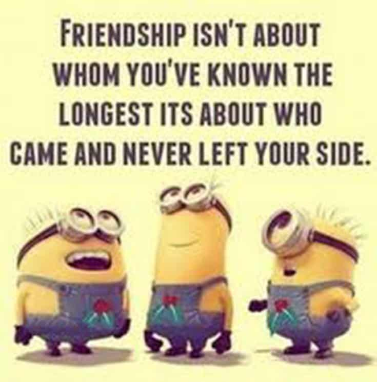 30 Friendship Quotes That You And Your Best Friends 25