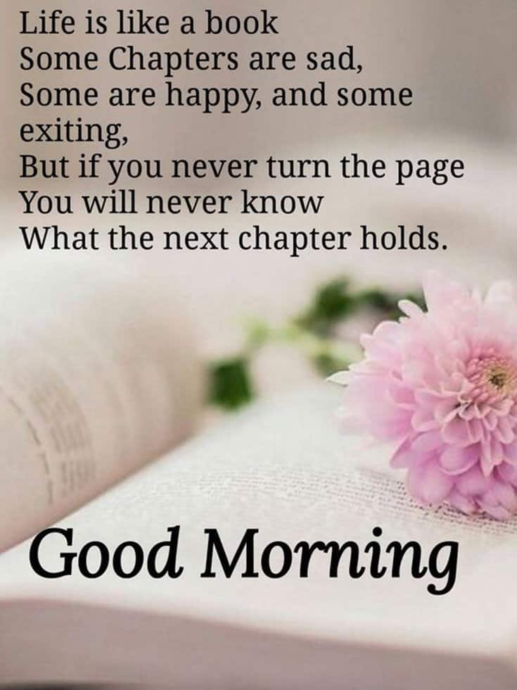 35 Good Morning Quotes With Images and Good Morning Messages ...