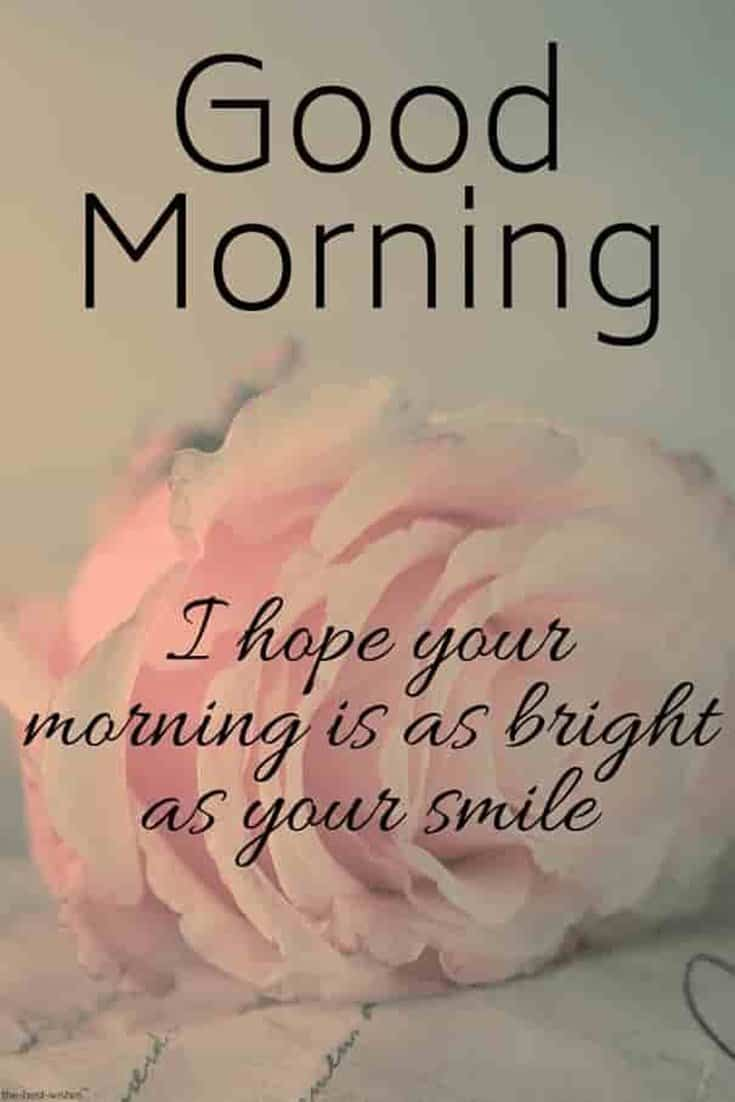 45 Good Morning Quotes Images To Make Your Happiest Day 11
