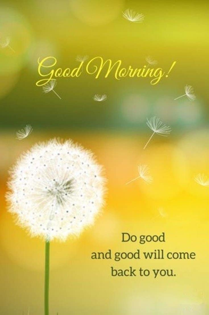 45 Good Morning Quotes Images To Make Your Happiest Day 2