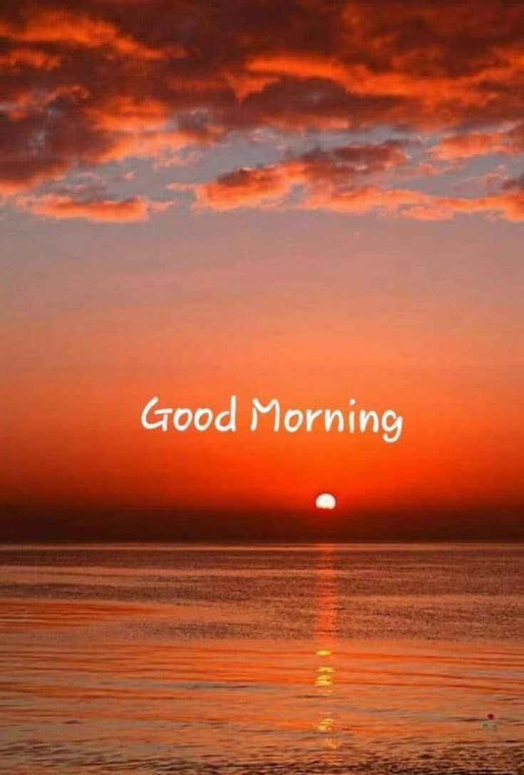 45 Good Morning Quotes Images To Make Your Happiest Day 20