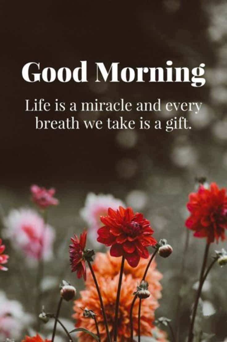 45 Good Morning Quotes Images To Make Your Happiest Day 39