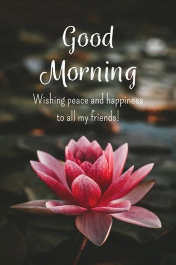 28 Good Morning Message For Friends - Morning Wishes Quotes with