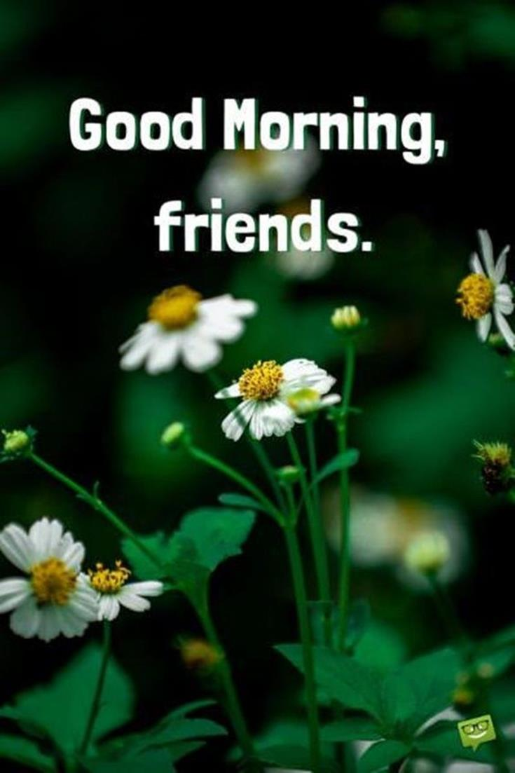 28 Good Morning Message For Friends Morning Wishes Quotes with Images and Pictures 15