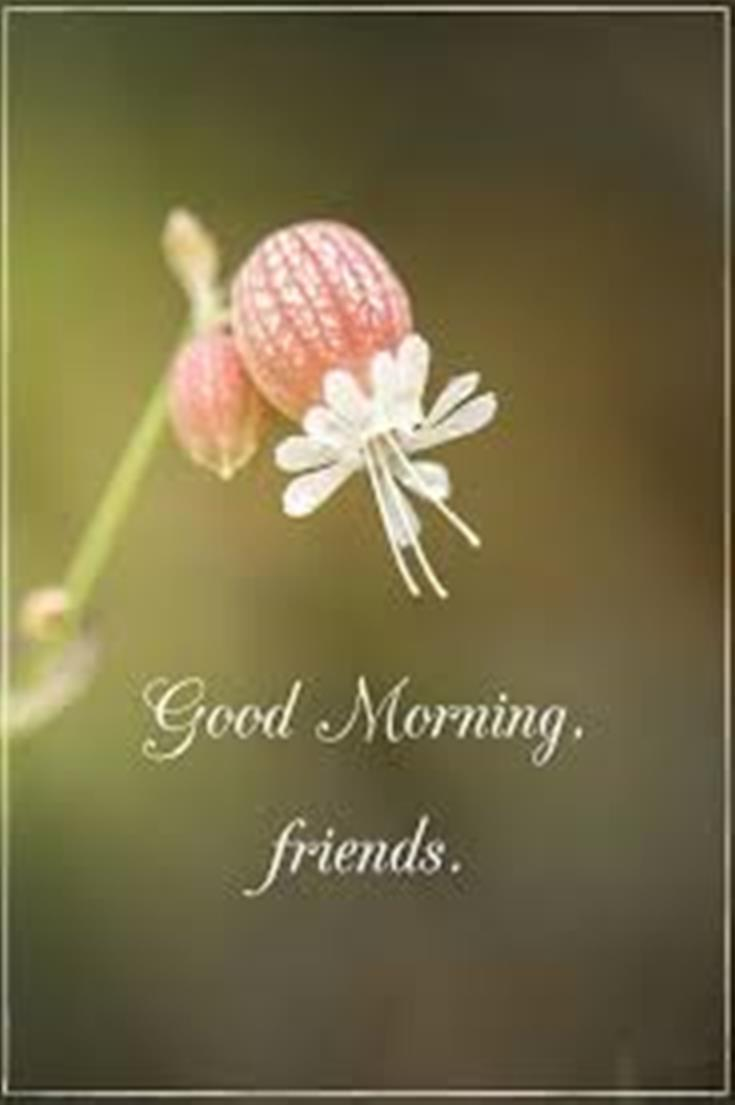 28 Good Morning Message For Friends Morning Wishes Quotes with Images and Pictures 27