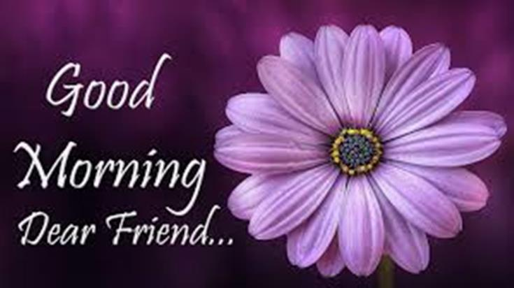 28 Good Morning Message For Friends Morning Wishes Quotes with Images and Pictures 28