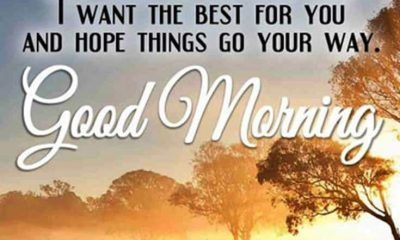 31 Good Morning Quotes for Her and Morning Love Messages 9