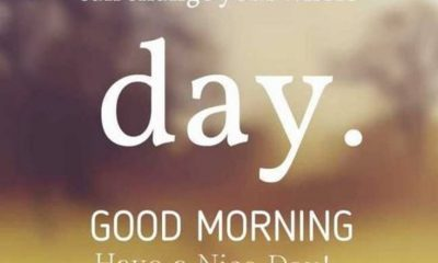 35 Good Morning Quotes And Images Positive Words for Good Morning 22