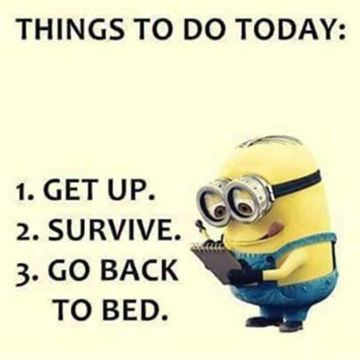 50 Best Funny Minion Quotes – FunZumo