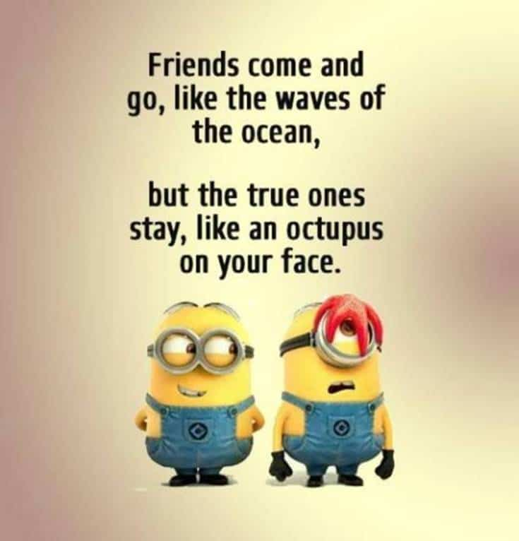 minions picture quotes