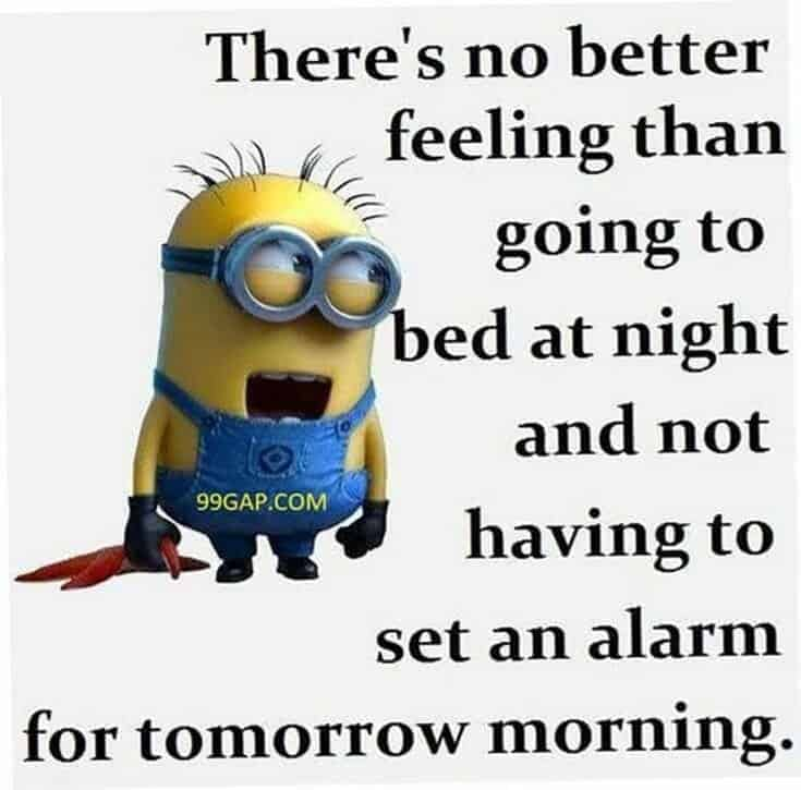 cute minions images and minion quotes pics