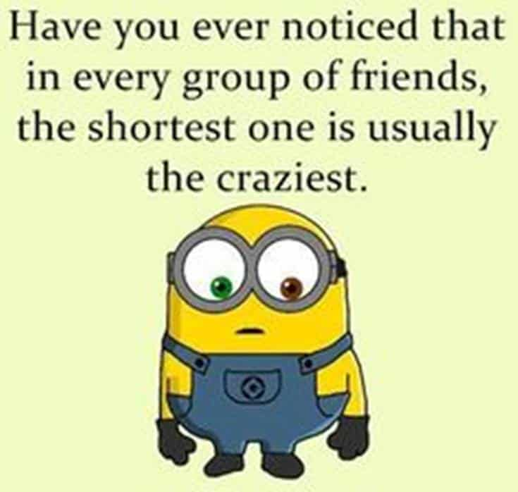 minions quotes on life and minion captions