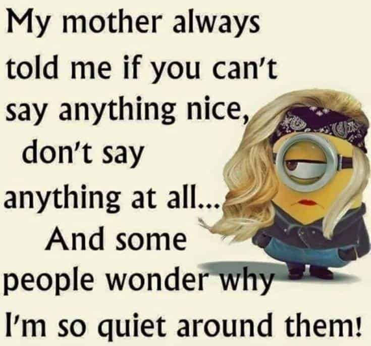 minions quote and funny minion jokes clean