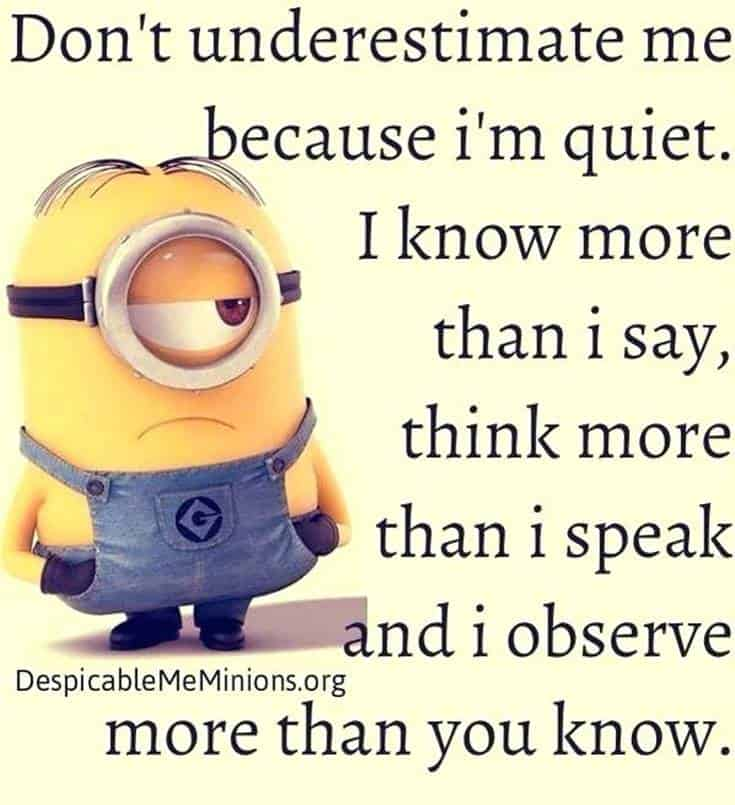 minions quotes images and minion funnies minion humor