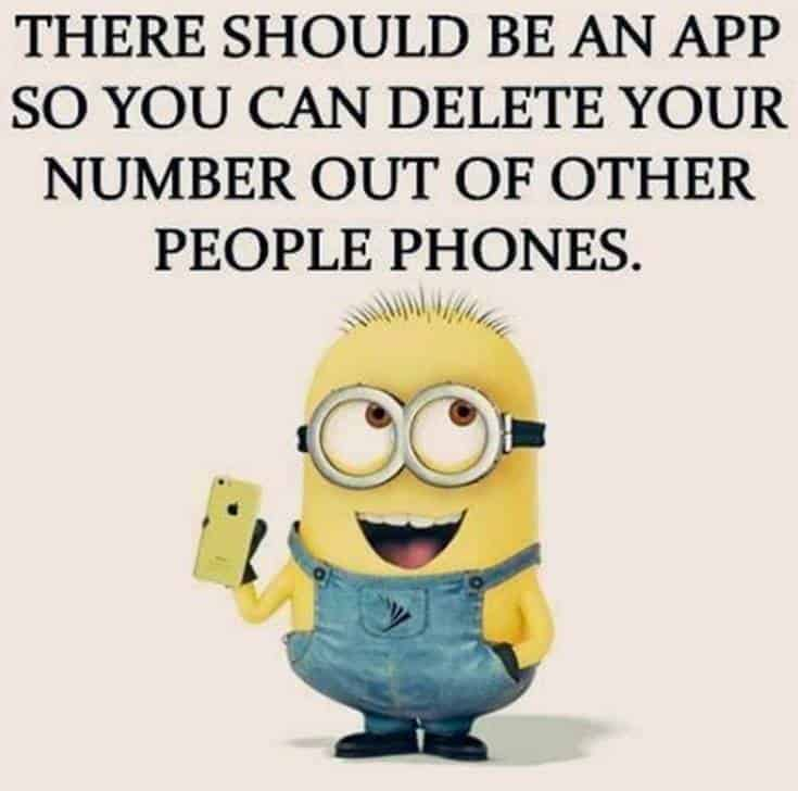 50 Best Funny Minion Quotes 7