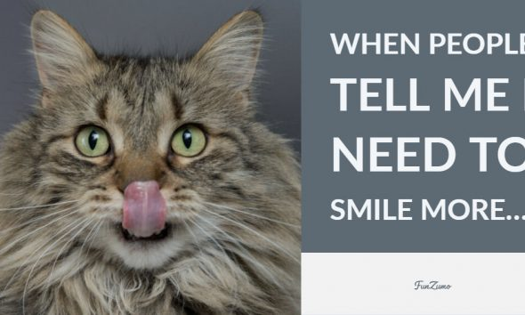 77 Funny Quotes About Life Short Words To Make You Laugh