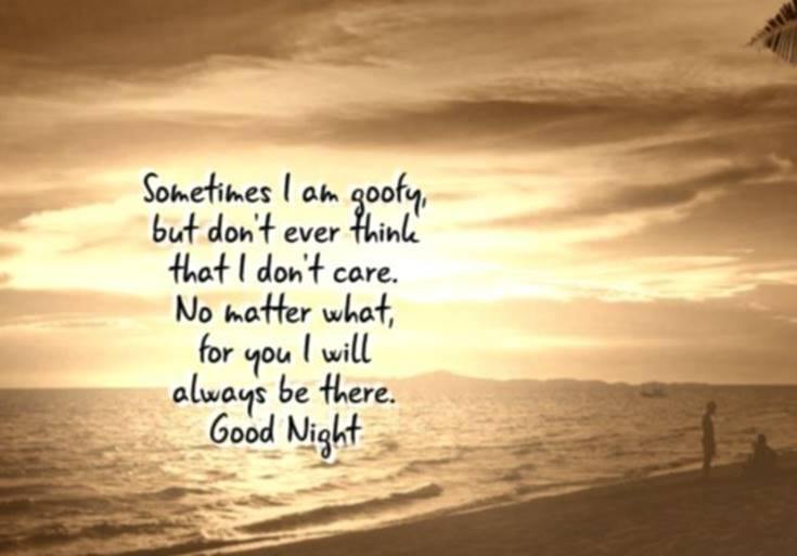 31 Amazing Good Night Quotes and Wishes with Beautiful Images 4