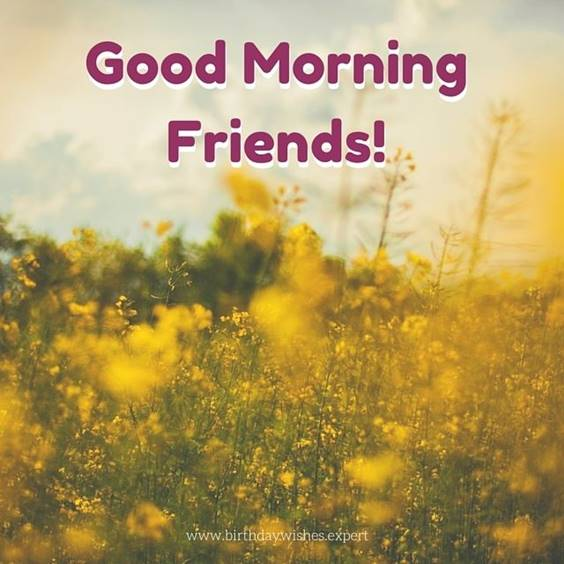 35 Good Morning Messages for Friends And Wishes With Beautiful Images 22