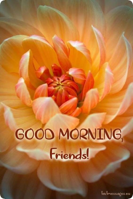 35 Good Morning Messages for Friends And Wishes With Beautiful Images 29