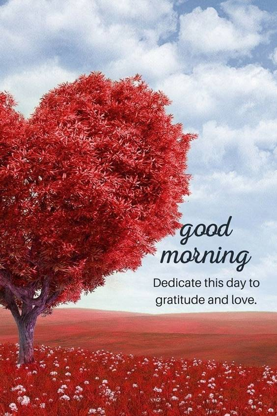 37 Good Morning Greetings Pictures And Wishes With Beautiful Images 14