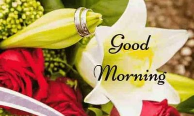 37 Good Morning Greetings Pictures And Wishes With Beautiful Images 28
