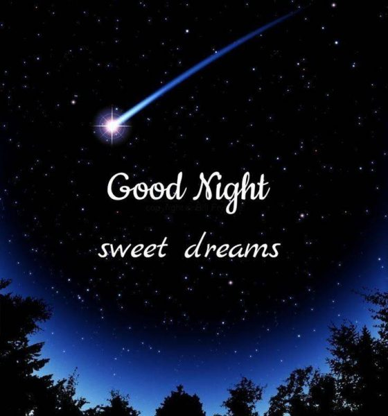 365 Good night Quotes with Beautiful Images 1
