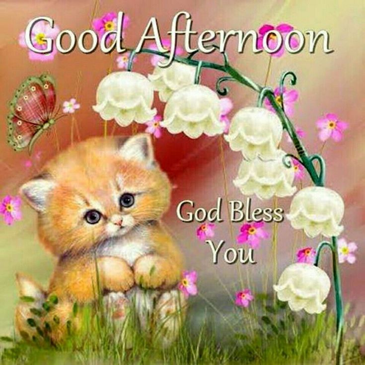 28 Best Good Afternoon Wishes images 10