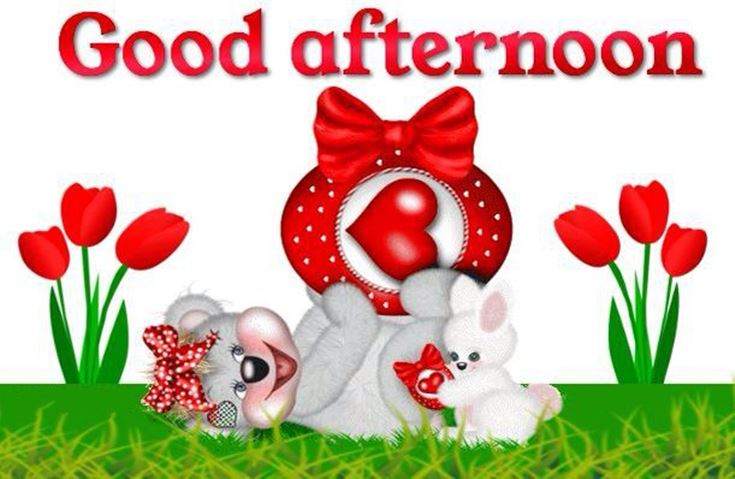 28 Best Good Afternoon Wishes images 11