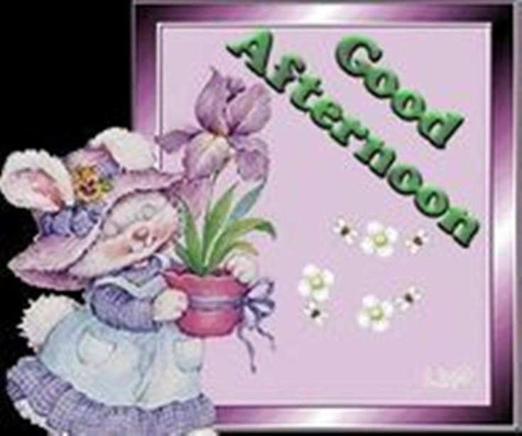 28 Best Good Afternoon Wishes images 12