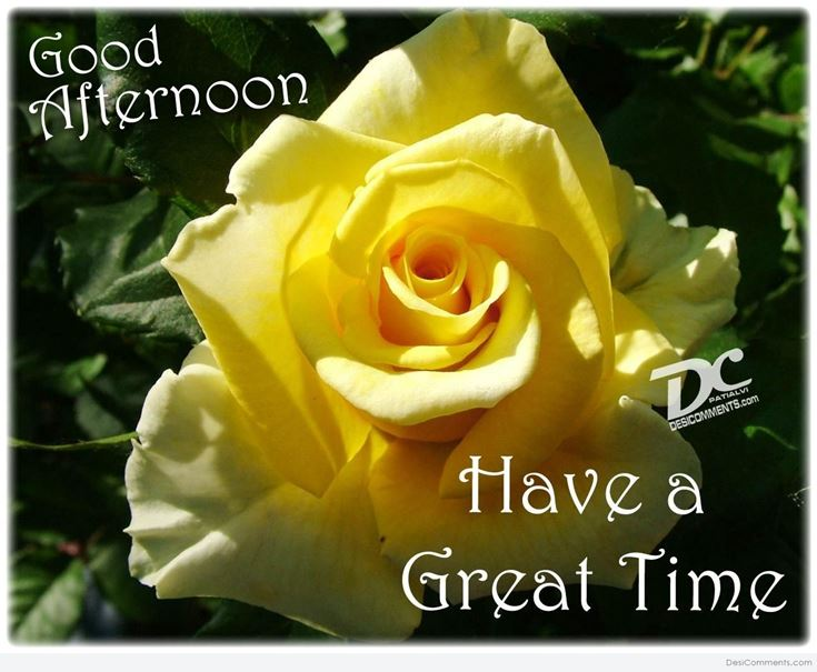 28 Best Good Afternoon Wishes images 14