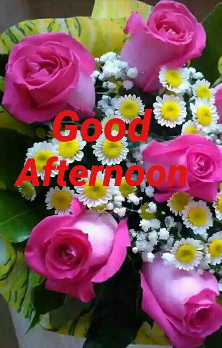28 Best Good Afternoon Wishes images 16