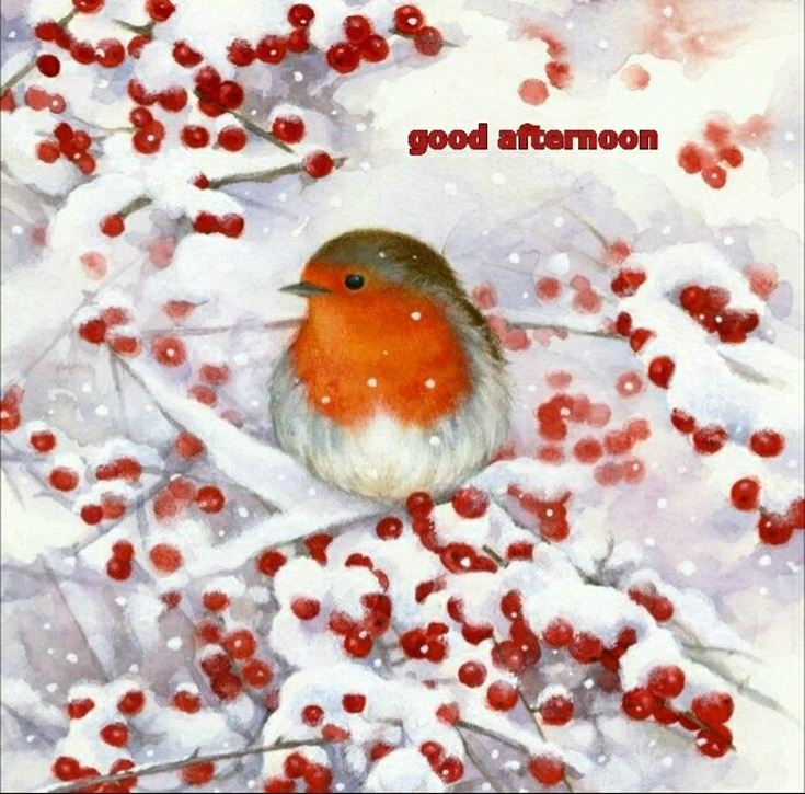 28 Best Good Afternoon Wishes images 17