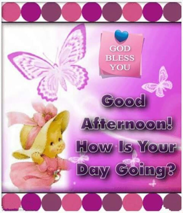 28 Best Good Afternoon Wishes images 19