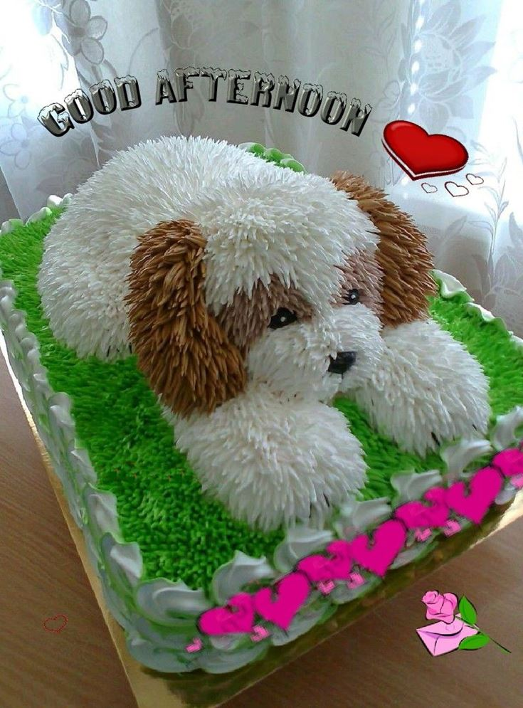 28 Best Good Afternoon Wishes images 24