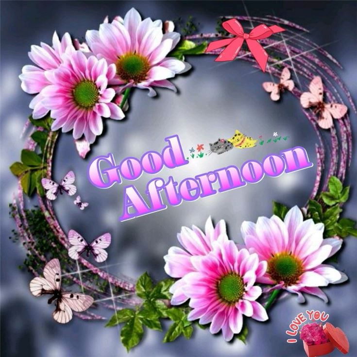 28 Best Good Afternoon Wishes images 25