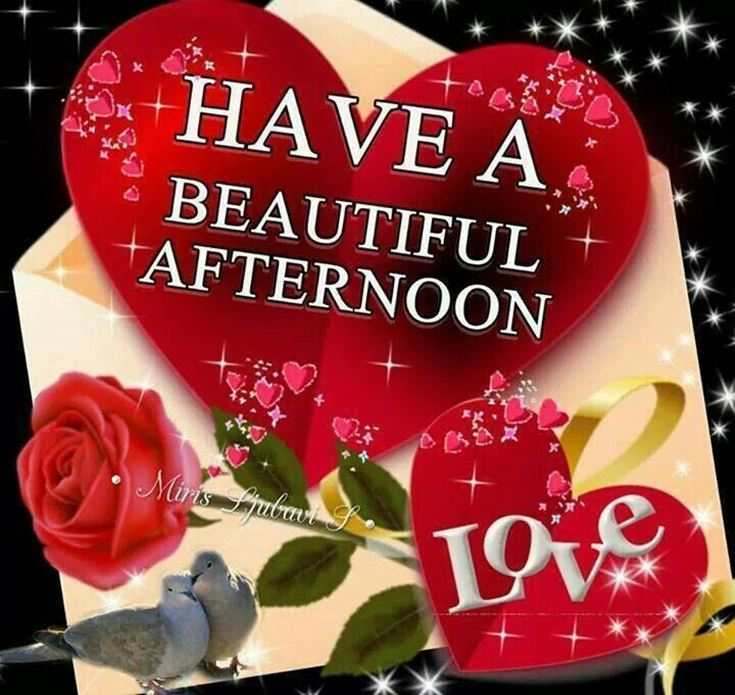 28 Best Good Afternoon Wishes images 3