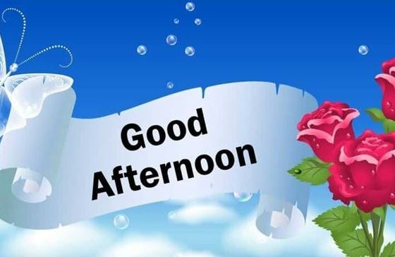 28 Best Good Afternoon Wishes images 5