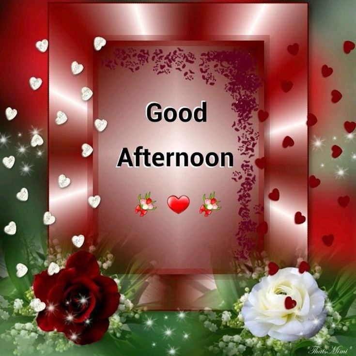 28 Best Good Afternoon Wishes images 7
