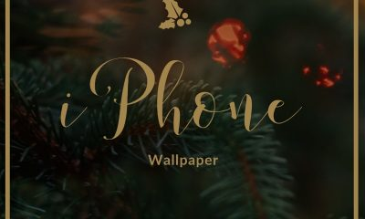 Cute iPhone Wallpaper Quotes with Beautiful Images