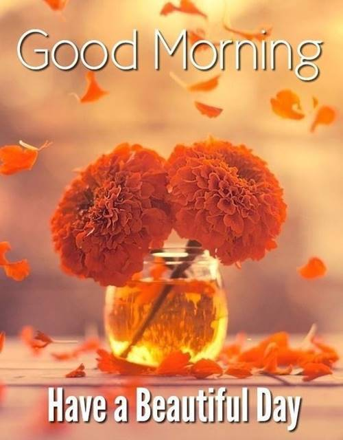 Good Morning Messages For Love And Wishes With Beautiful Images 6