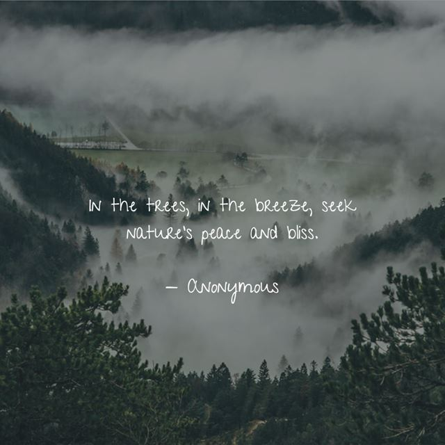 Nature quotes that will make you appreciate its beauty