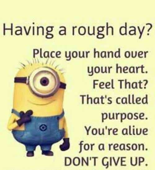 45 Funny Jokes Minions Quotes With Images Funny Text Messages minion sayings funny pictures for text messages
