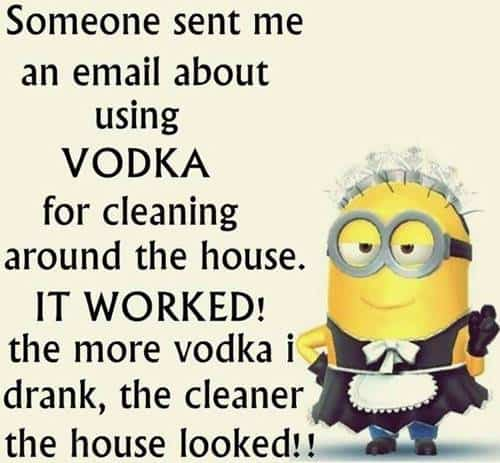 45 Funny Jokes Minions Quotes With Images Funny Text Messages cute minion sayings hilarious texts