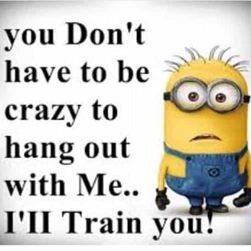 45 Funny Jokes Minions Quotes With Images Funny Text Messages 33