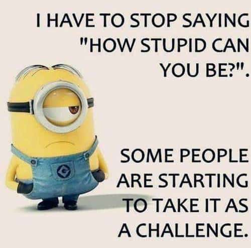 45 Funny Jokes Minions Quotes With Images Funny Text Messages 37